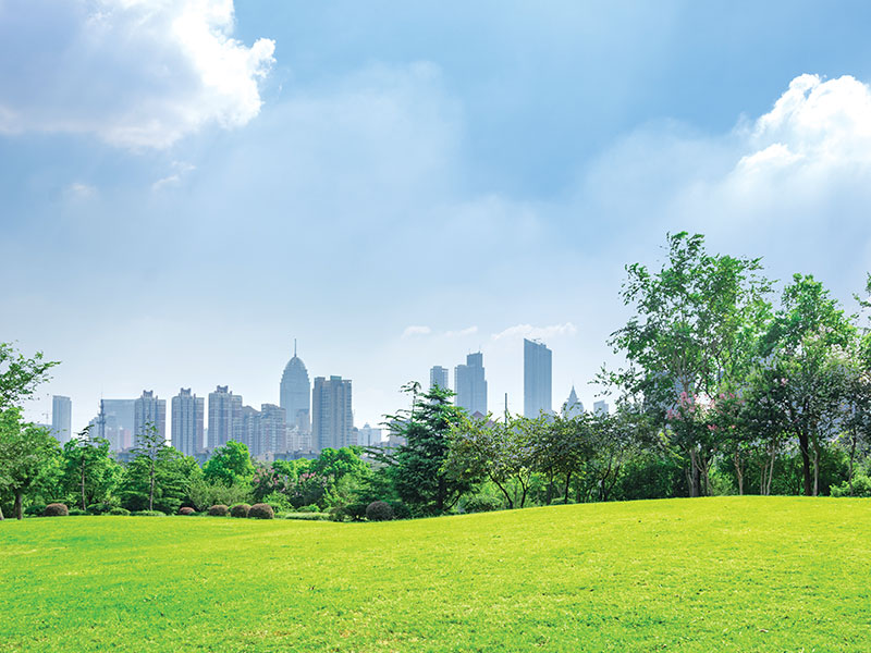 Discover the Garden City & its environs - Bengaluru